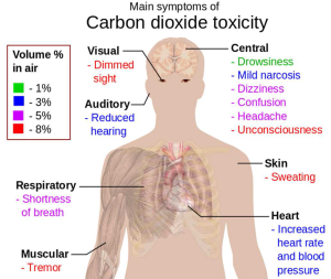 How CO2 affects the body