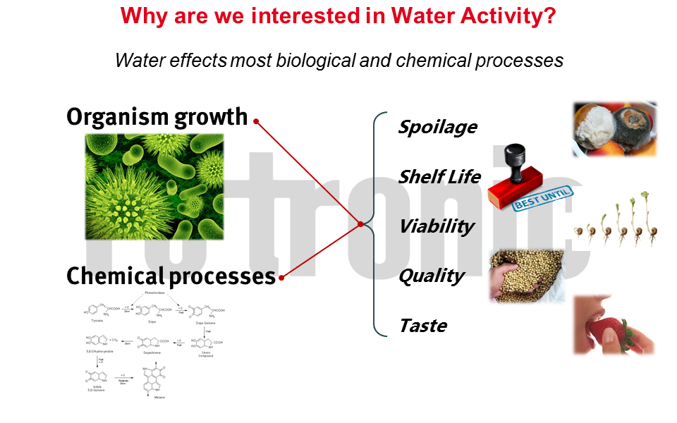 what water and product
