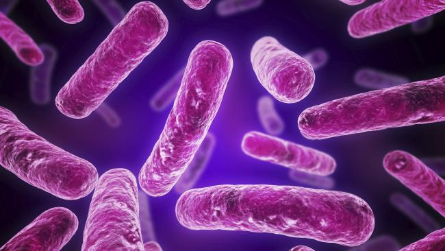 Monitoring for Legionella – The Bacterial Threat